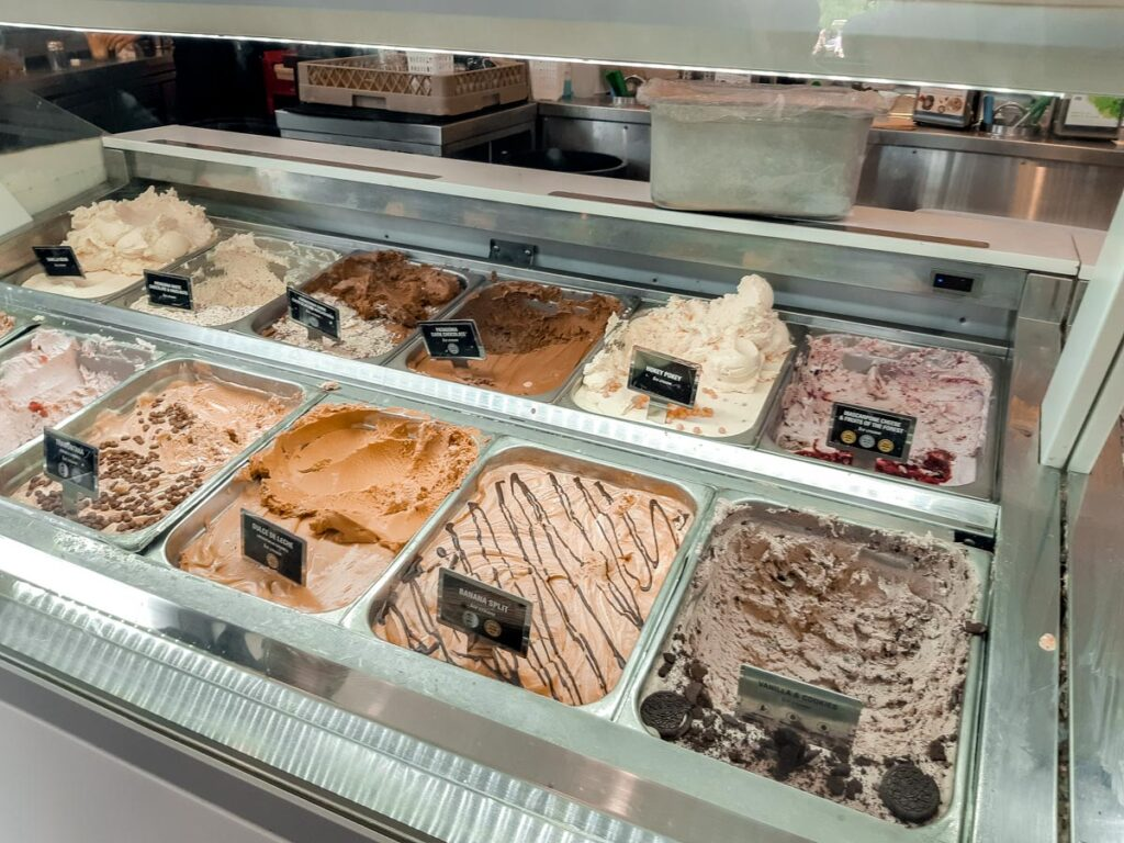 Ice-cream selection at Patagonia Chocolates, Queenstown
