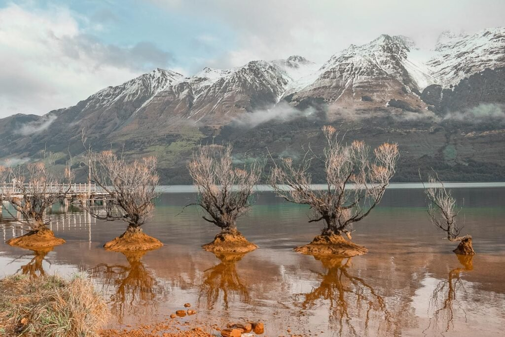 The famous trees in a line at the Glnenorchy foreshore in Lake Wakatipu