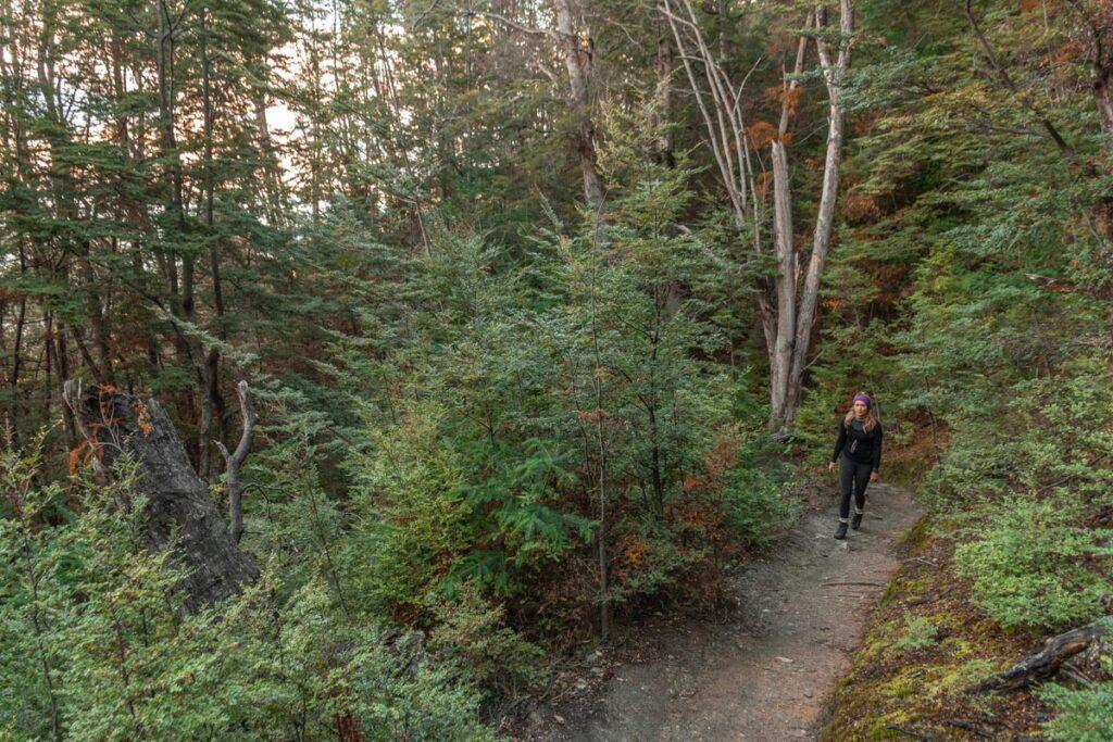 A lady walks on a flat path on the Tiki Trail