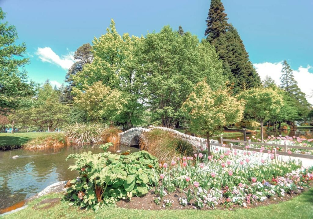 A bridge and flowers in the Queenstown Gardens