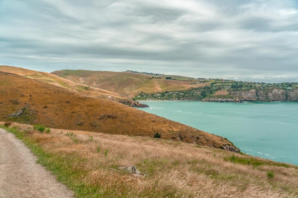 Views of the Godley Head Loop Track and the beautiful coastline