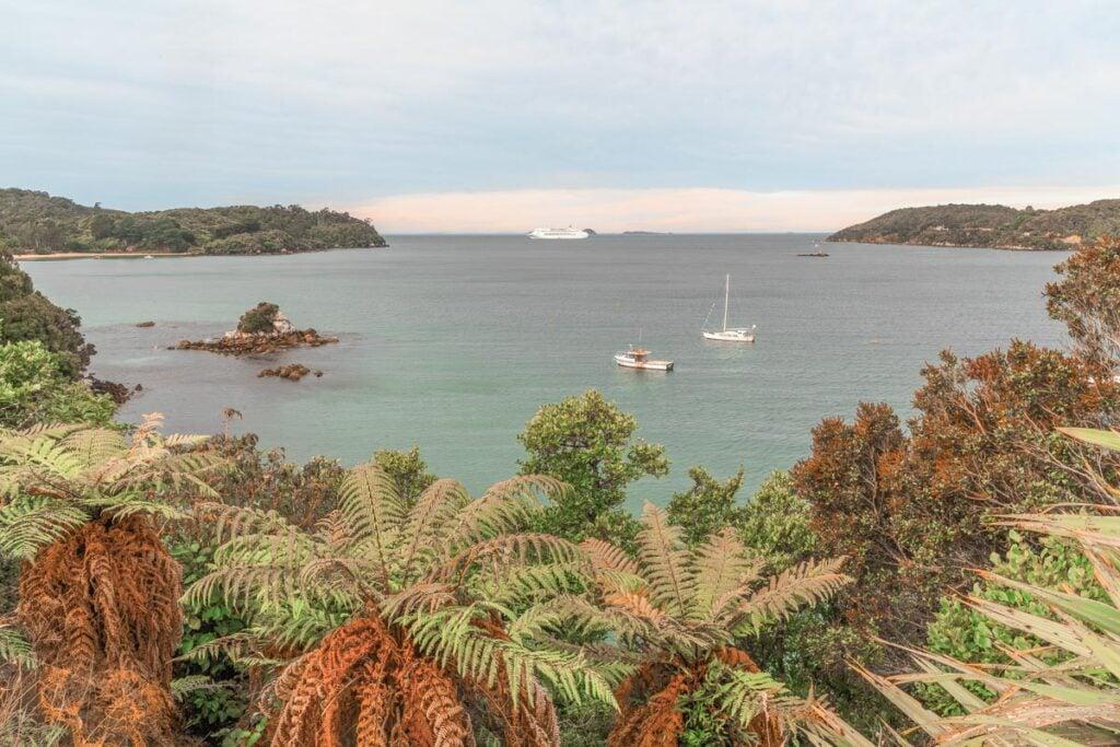 Views from Stewart Island, New Zealand