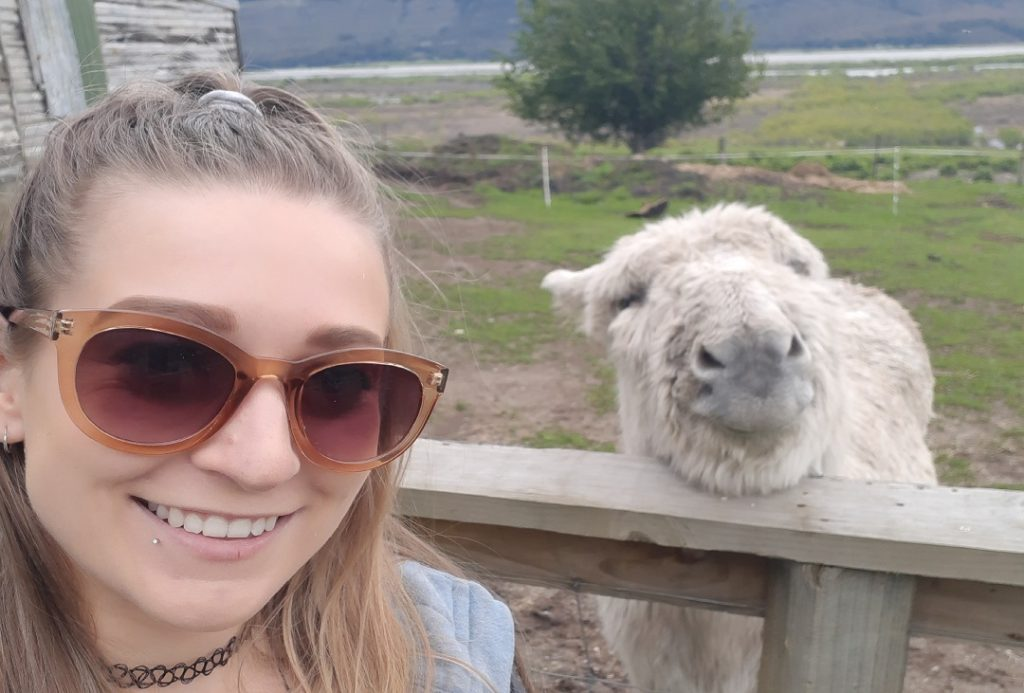 taking a selfie with a donket at the Glenorchy Animal Experience