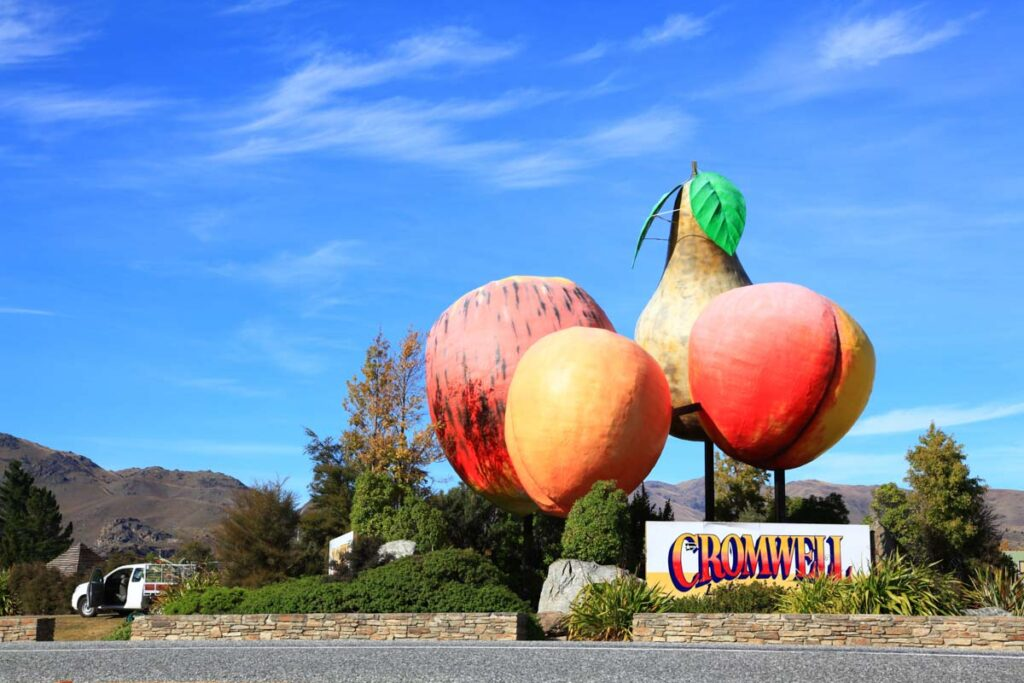 The big fruit in Cromwell, New Zealand