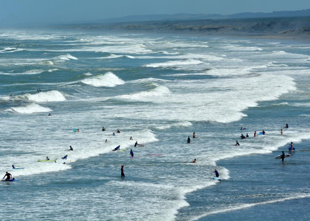 People surfing at Muriwai Beach