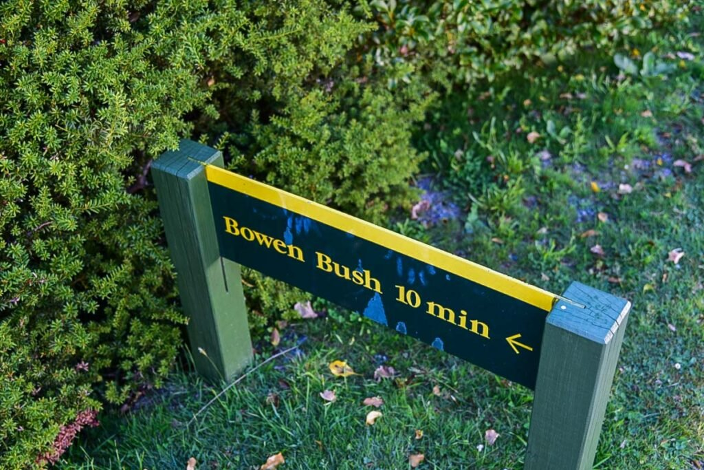 Sign for the Bowen Bush Walk in Mount Cook