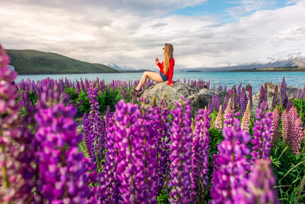 Bailey from My Queenstown Diary sits on a rock at Lake Tekapo during Lupin season