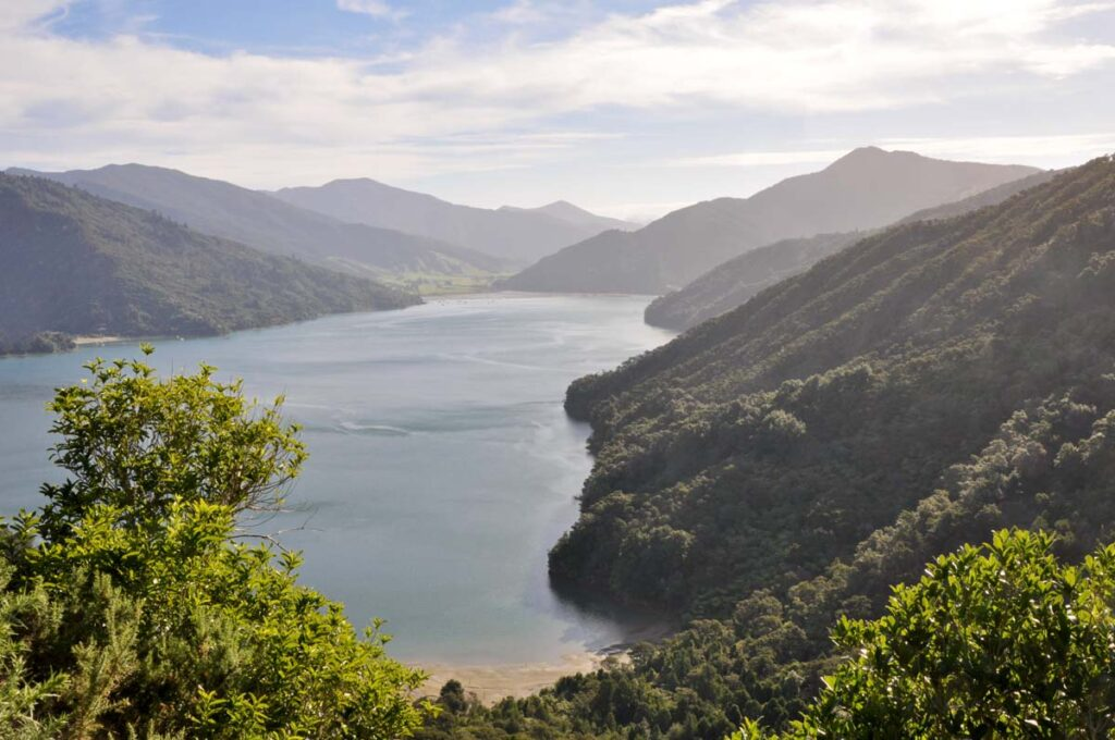 The Marlborough Sounds on Queen Charlotte drive