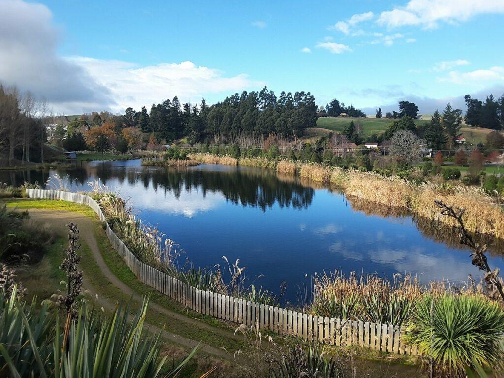 bellview wetlands reserve in new zealand