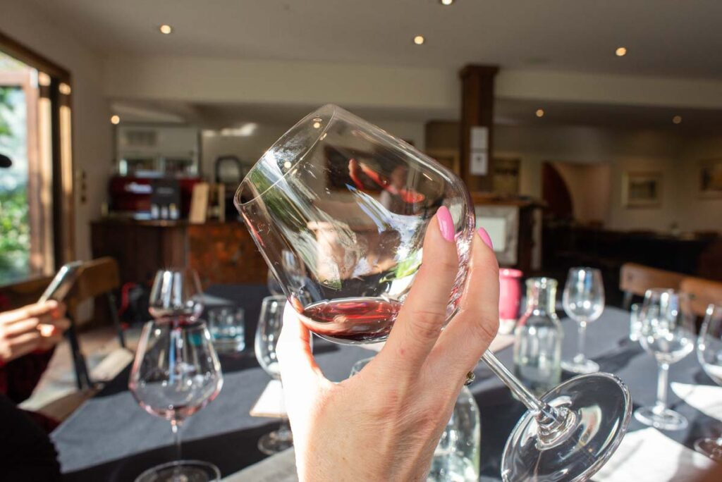 A lady holds a glass of wine up in a winery near Queenstown
