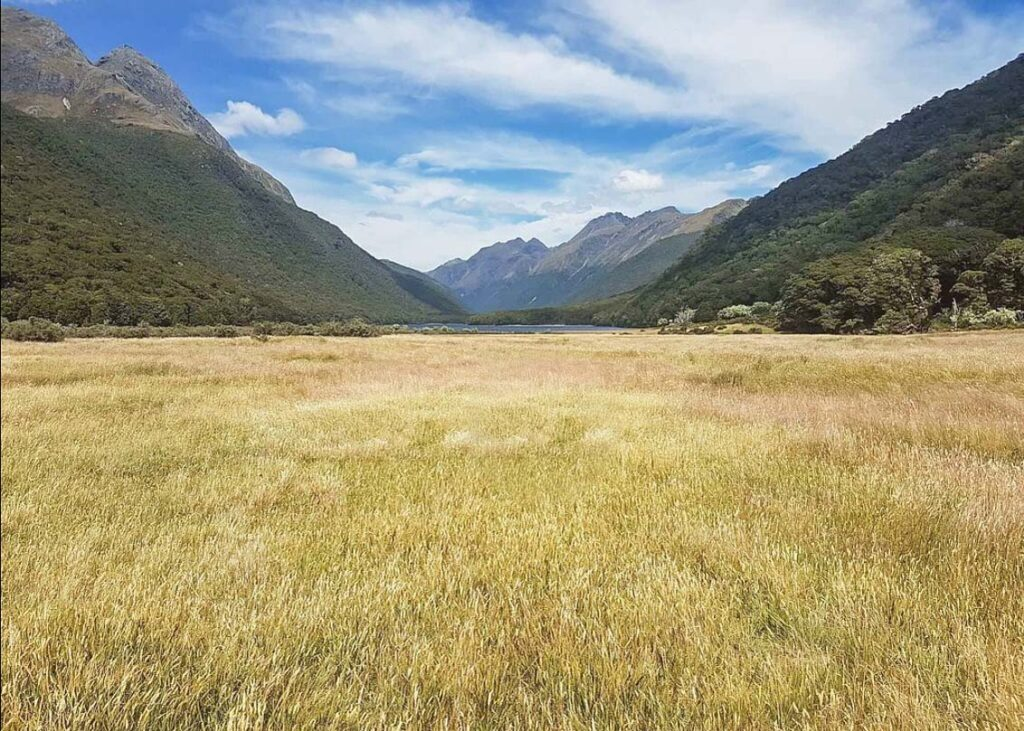 Views of the Greenstone and Caples Track