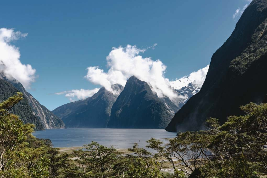 The view from the Milford Sound Lookout Track