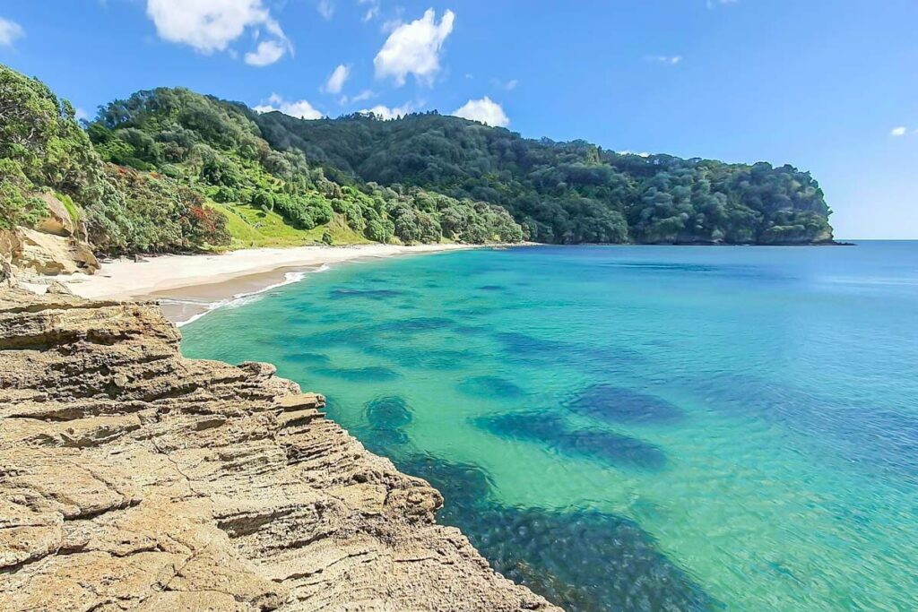 Orokawa Bay, New Zealand